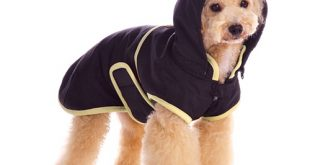 dog jackets starting ... WOZHPBO