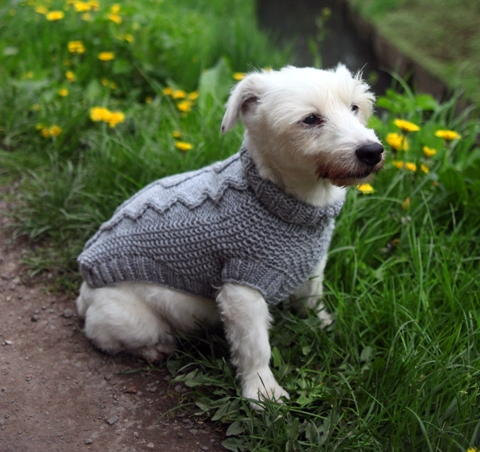 Knitted Dog Coats 100 Merino Wool Cable Knit Sweater Grey Dog Coat