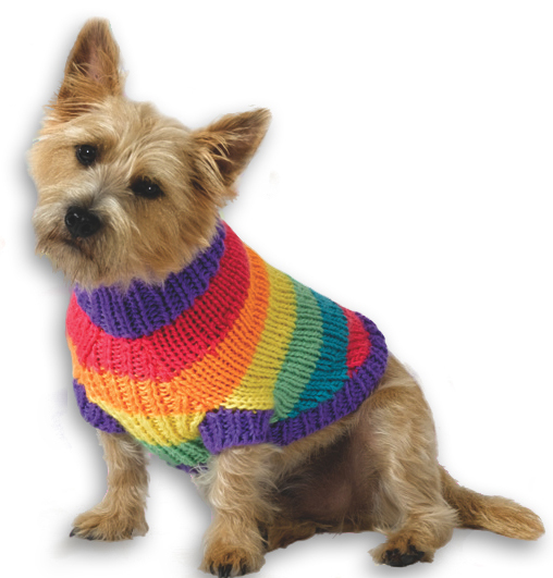 knitted dog coats rainbow dog sweater BURWQSI