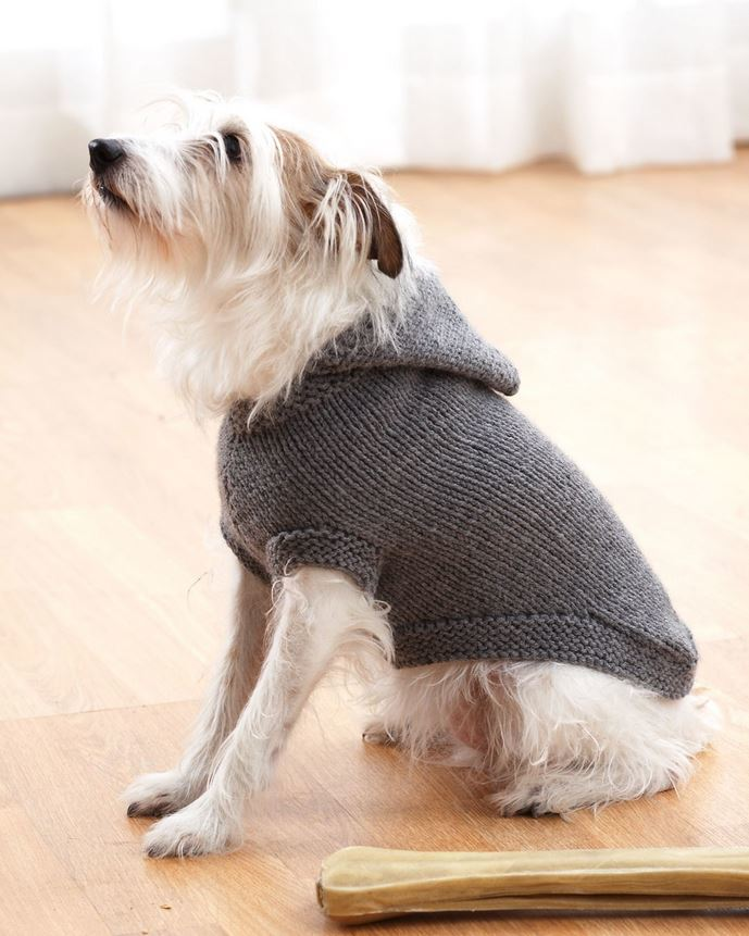 knitted dog coats sparkyu0027s favorite knit sweater | allfreeknitting.com EDVNWTD