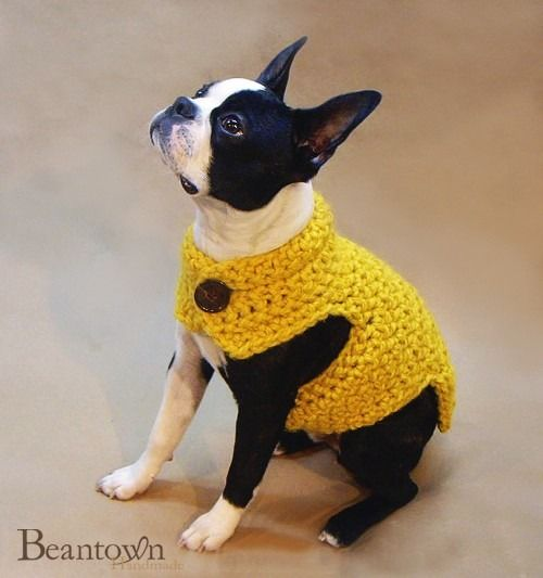 Oh my goodness! My heart hurts with all this cuteness! Crocheted Dog
