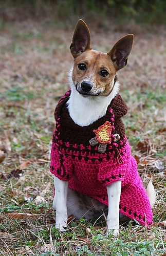 Ravelry: Custom-Fit Crochet Dog Sweaters - patterns