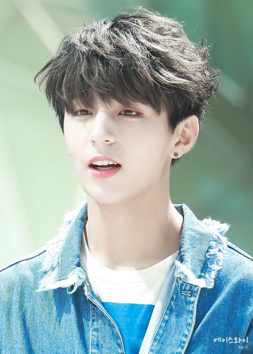 Latest Trendy Asian and Korean Hairstyles for Men 2019 | Bellatory