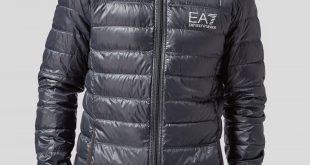 armani jackets emporio armani ea7 bubble hooded jacket | scotts menswear UPISSSB