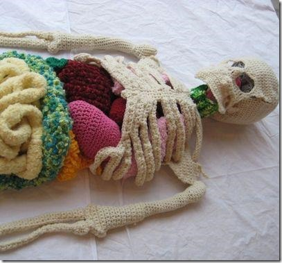 cool crochet patterns cool kids craft crochet anatomy class project BAKMEAF