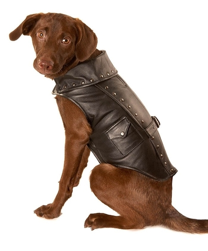 dog jackets black leather motorcycle dog jacket PWXXYPH