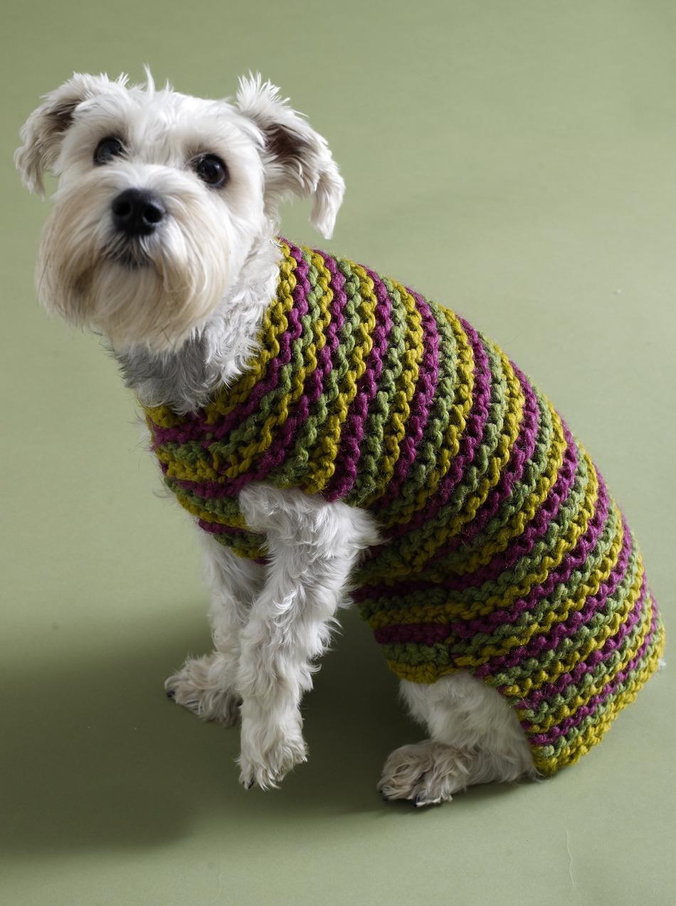 dog sweater knitting pattern 5 free dog sweater knitting patterns - on the loveknitting blog! UQGJVQA