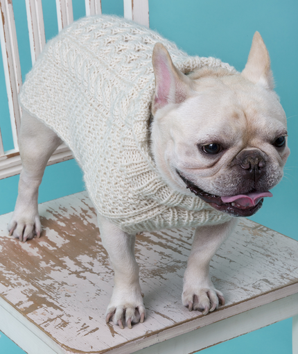 dog sweater knitting pattern cabled dog sweater | red heart PIMLPCH