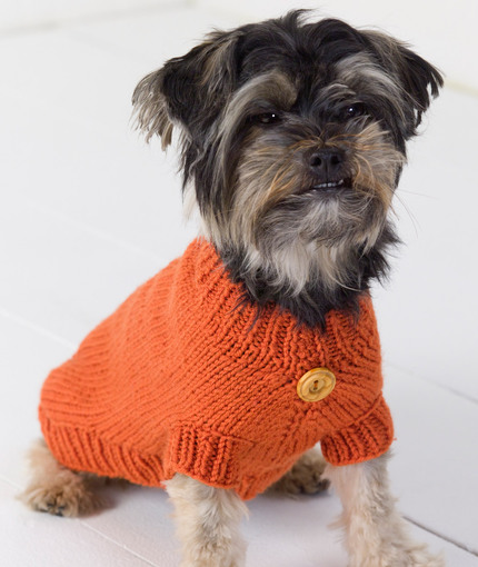dog sweater knitting pattern dog sweater | red heart QSGCNKL