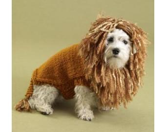 dog sweater knitting pattern king of the beasts lion dog sweater pattern (knit) HXBYSWT