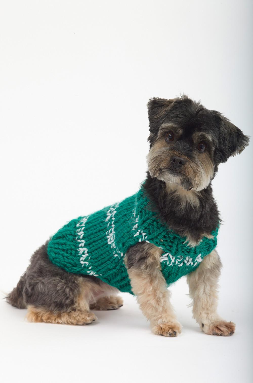 dog sweater knitting pattern top 5 free dog sweater knitting patterns, on the loveknitting blog! MGDOXGU