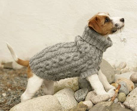 knitted dog coats top 5 free dog sweater knitting patterns JXYTMDX