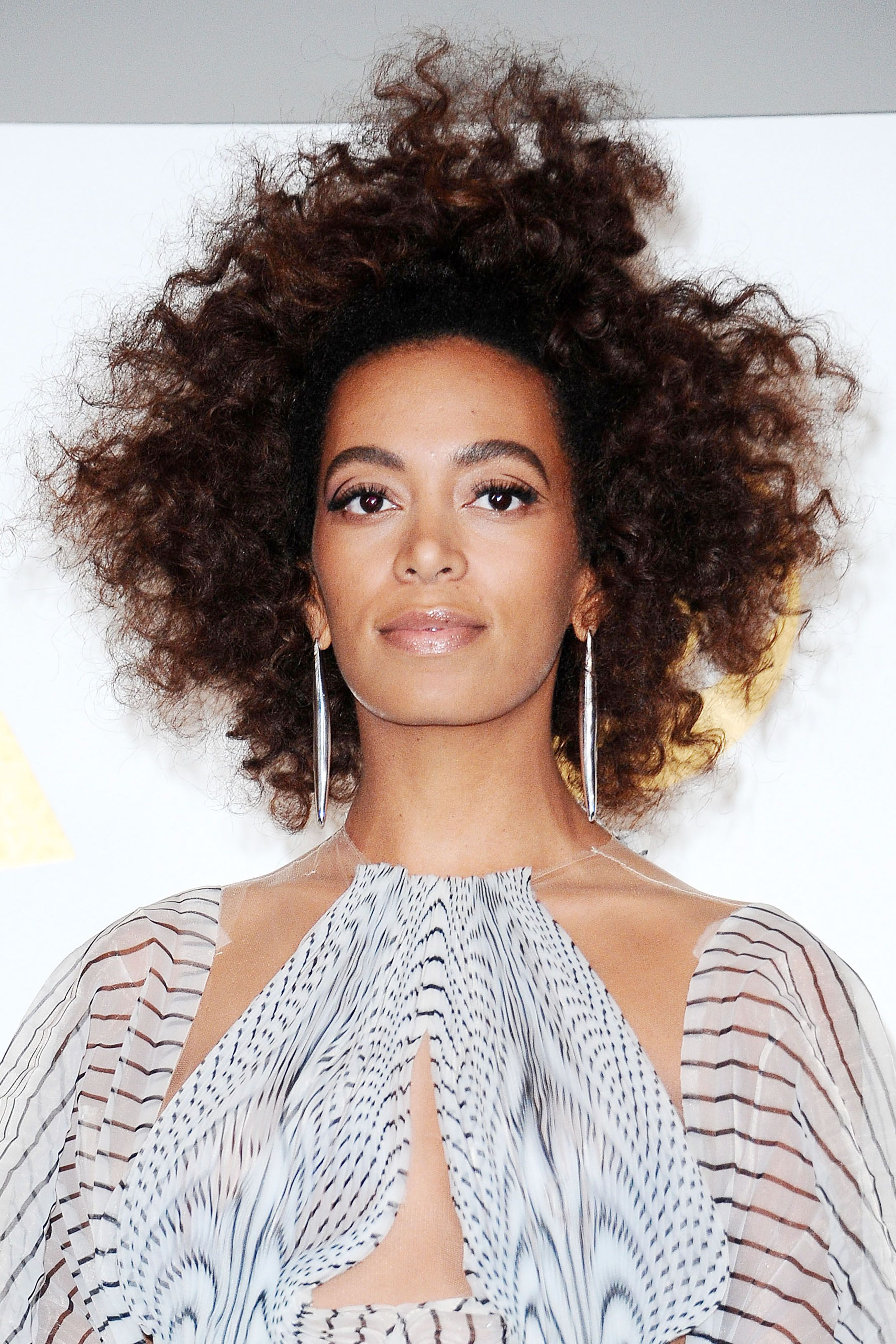 15 Gorgeous Natural Hairstyle Ideas - Natural, Curly, and Braided