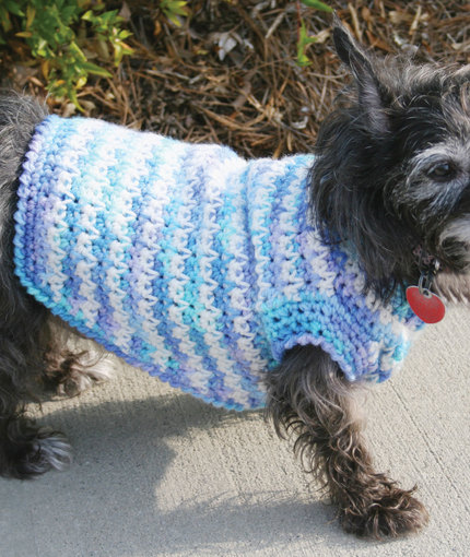 TRICKS ON KEEPING YOUR PET WARM WITH   CROCHET DOG SWEATER
