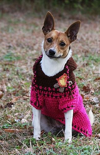 Ravelry: Custom-Fit Crochet Dog Sweaters - patterns