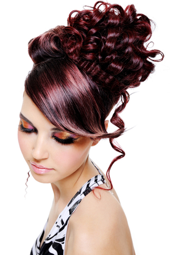 Courses | Cannella Schools of Hair Design (630) 833-6118